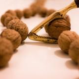 walnuts-1081438_1280